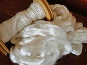 Bombyxmori silk